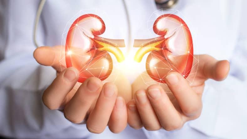 Пиелонефрит – повече информация за коварната уроинфекция!