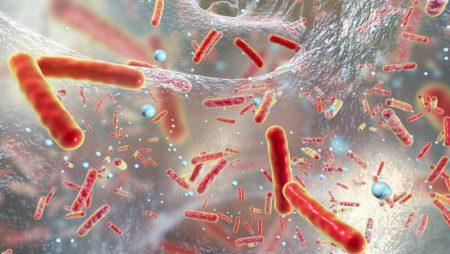 Бактериално носителство – ето какво трябва да знаете