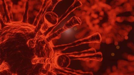Учените разкриват: ето как коронавирусът мутира